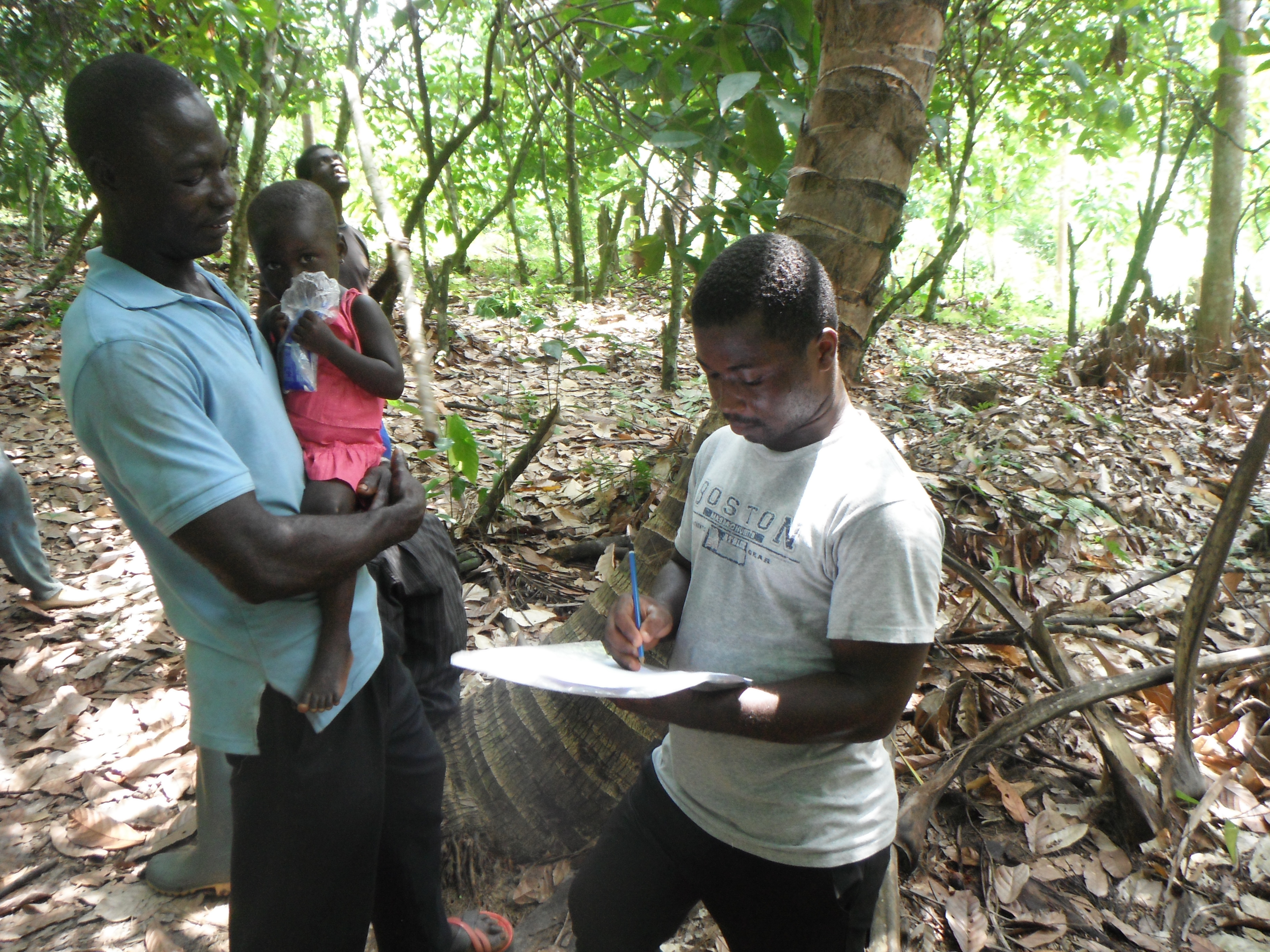 Evaluating goods and services from the forest