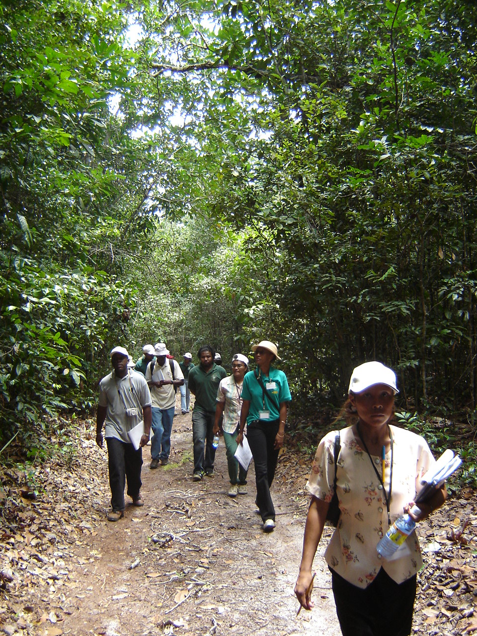 Field Visit to Forest Area in Guyana