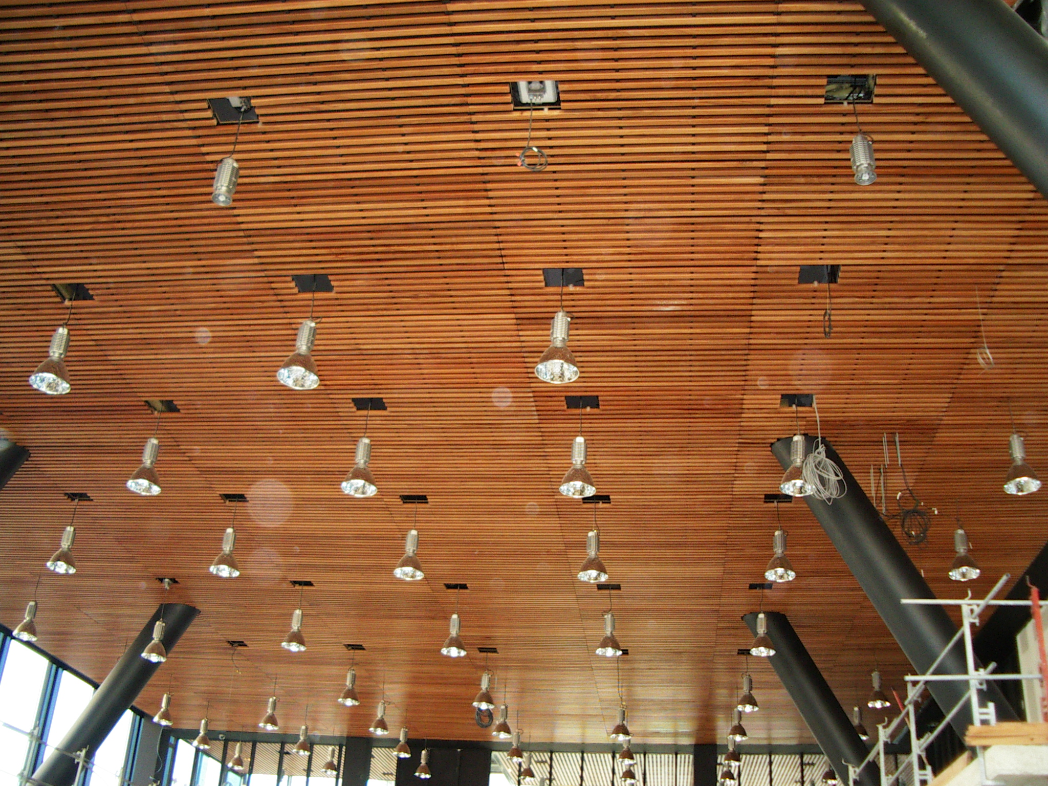 Ceiling of urban district hall