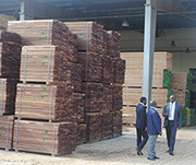 Sawn timber ready for the export market. Even though many African countries have a wealth of forest resources, the region imports timber and timber products. Photo: ITTO