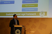 Sharing experiences on improved timber tracking: Luis Siney, INAB, presents Guatemala's electronic timber traceability system developed through ITTO project TMT-PD 004/11 Rev.2 (M) at the APEC workshop. Photo: R. Carrillo/ITTO