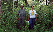 A local farmer (left) and a project officer stand in a patch of restored forest in farmland in the Guaviare region, Colombia. Families in the area are pursuing various tree-based land-use options as a result of an ITTO project.<br />