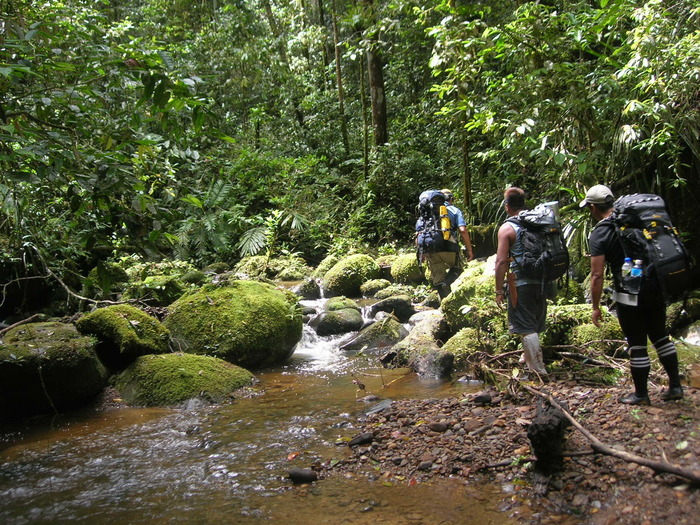 Trekking to the project site<br><br>Project PD 635/12 Rev.2 (F) is helping improve management in the buffer zone of the Pulong Tau National Park in Sarawak, Malaysia.<br>