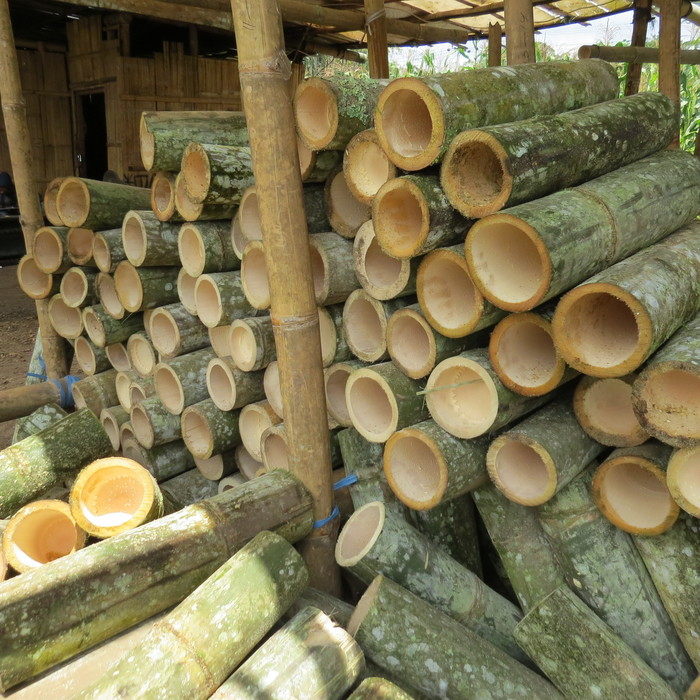 Green gold<br><br>Bamboo is abundant and widely used. ITTO is helping member countries sustainably manage this great natural resource through projects such as ITTO project PD 600/11 Rev.1 (I) in Indonesia.<br>