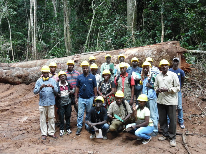 Trained in C&I<br><br><p>Foresters in the Central African Republic receive training in the application of the principles, criteria and indicators of SFM as part of ITTO project PD 124/01 Rev.4 (M), Phase 3.<br>