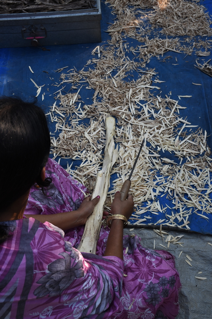 Source of livelihoods<br><br>Agarwood chips are processed by hand in a community enterprise in Assam, India, where the ITTO&ndash;CITES Programme is helping improve the management of the species in both wild and planted forests.<br>