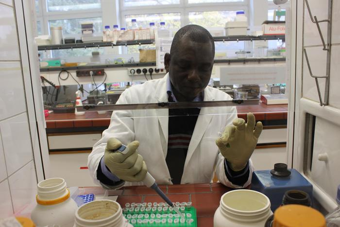 Timber DNA<br><br>ITTO project PD 620/11 Rev.1 (M) helped develop capacity in Africa in techniques to extract DNA for the identification and tracking of timber species.<br>