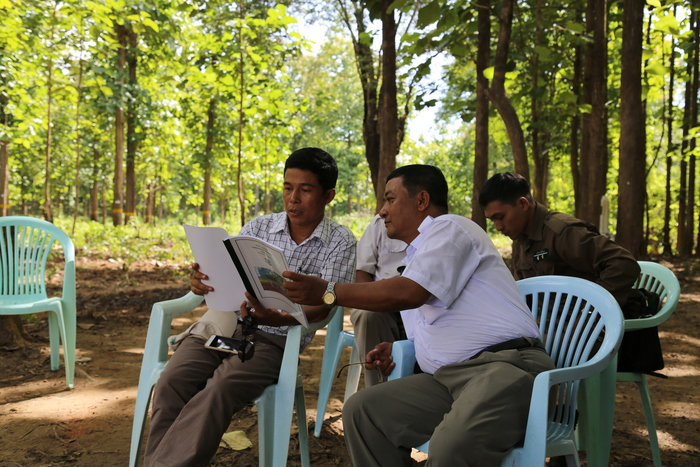 Teak for the future<br><br>Officers in the Myanmar Forest Department review a tree identification guide as part of ITTO project PD 270/04 Rev.2 (F), which has supported Myanmar in the<em> in situ</em> and <em>ex situ</em> conservation of its teak resources.<br>
