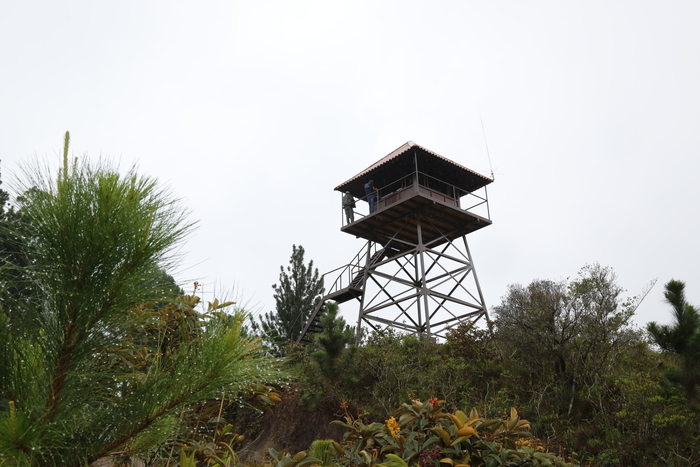 On the lookout<br><br>This tower to enable the early detection of forest fires in the La Yeguada forest reserve in Panama was built as part of ITTO project PD 441/07 Rev.2 (F).<br>