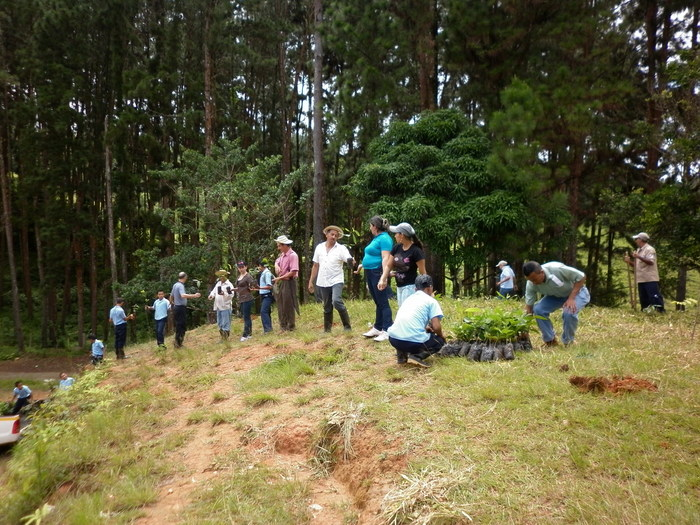 Helping nature<br><br>Members of a local community in Panama participate in activities under ITTO project PD 441/07 Rev.2 (F) with the aim of rehabilitating a forest affected by fire.<br>